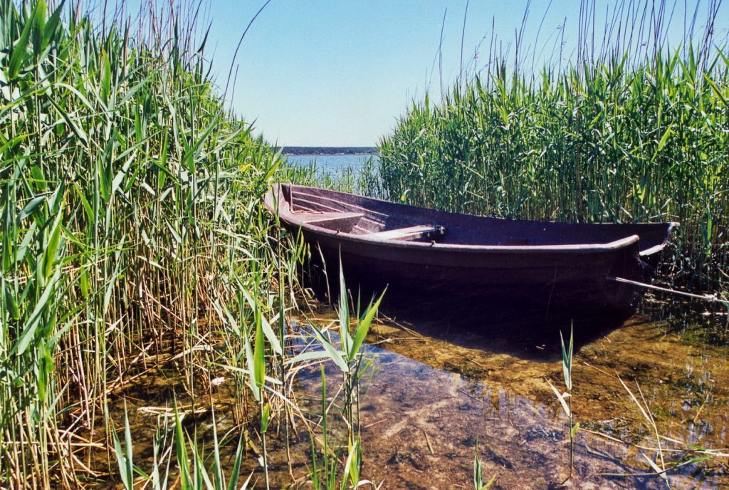 fischerboot-ruegen